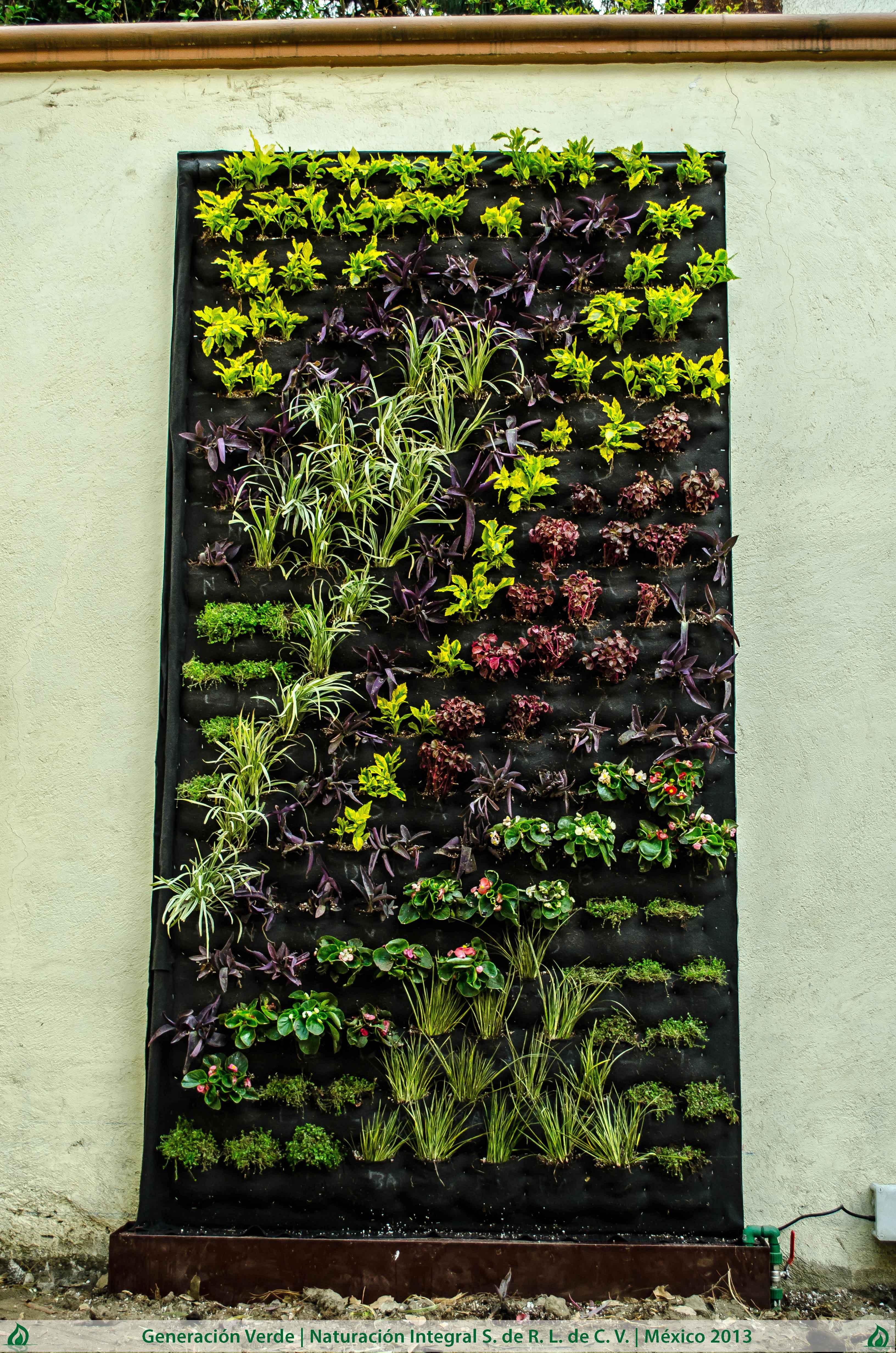 Jardin Vertical Mexico Jardin-vertical-ajusco