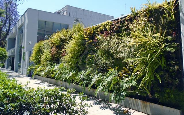 Jardín Vertical con vegetación en excelente estado