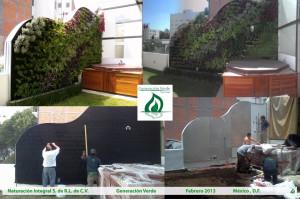Sus primeros 7 meses de vida del jardin vertical copy