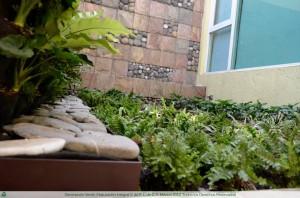 Muro Verde en Casa Particular