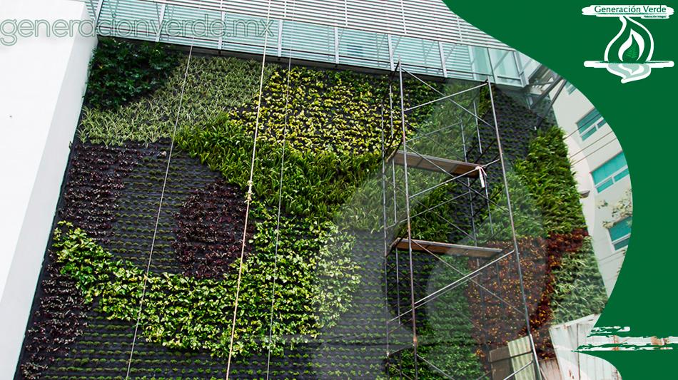 Jardin Vertical Mexico Jardín Vertical Que Adorna