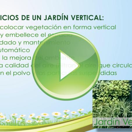 Jardines verticales y azoteas verdes generacion verde for Beneficios de los jardines verticales