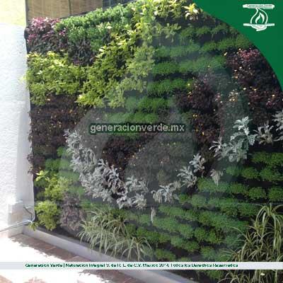 Jardines verticales y azoteas verdes generacion verde for Jardin vertical en casa
