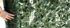 ¿Plantas Artificiales o Plantas Naturales?