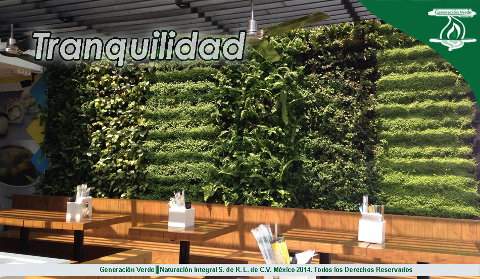 Jardines verticales y azoteas verdes generacion verde for Muros verdes beneficios