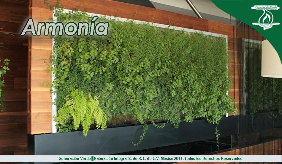 Jardines verticales y azoteas verdes generacion verde - Como hacer un muro verde ...