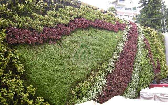 Jardín Vertical Del Delfín, Naucalpan
