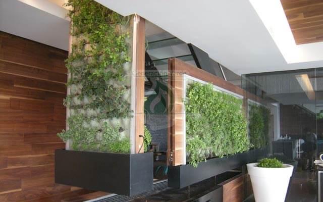 Muro Verde Interior, Lomas de Vista Hermosa