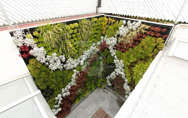 Muro Verde Exterior e Interior, Jardines del Pedregal