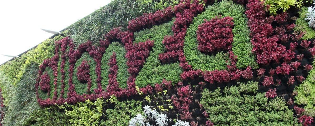 Jardín Vertical Bodegas Alianza Camarones