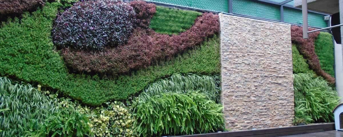 Jard n vertical y muro llor n en colonia florida en cdmx for Muros verdes naturales