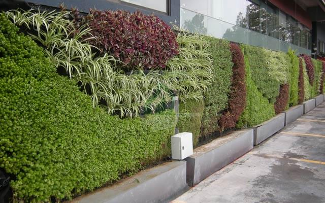 Jard n vertical conabio for Riego jardin vertical