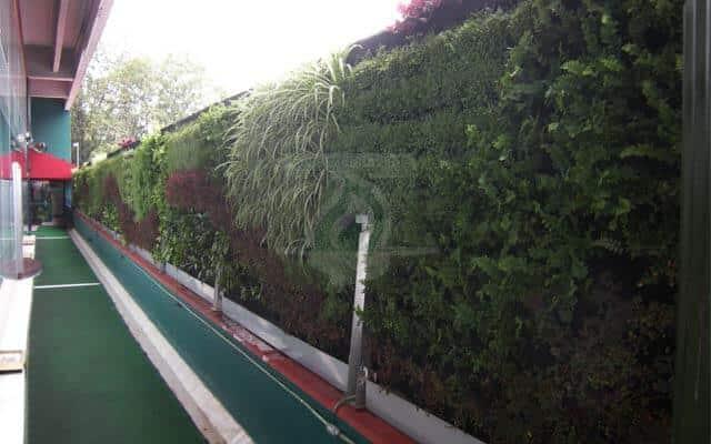 Jardín Vertical de doble vista