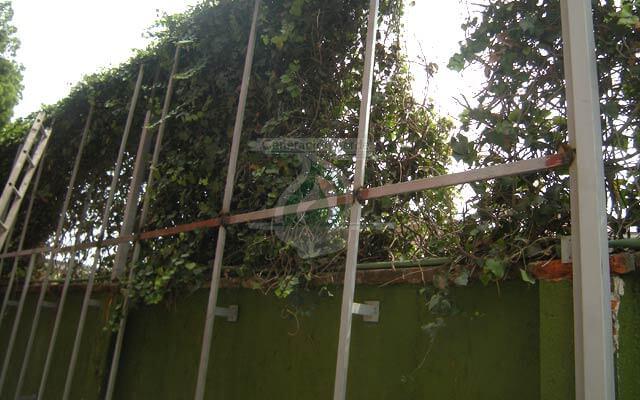 Estructura para colocar el Muro Verde