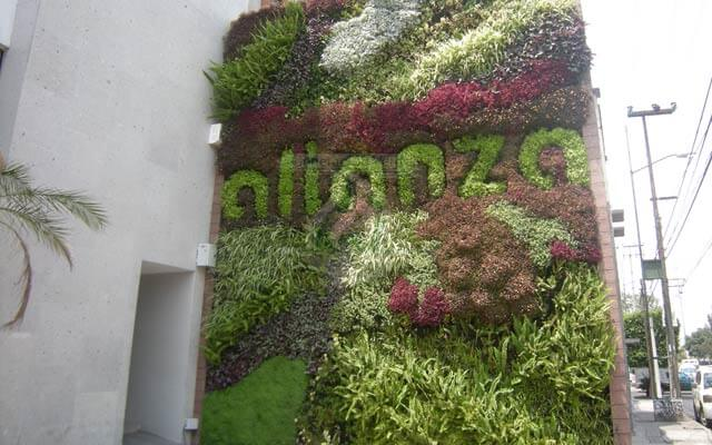 Jardín Vertical Bodegas Alianza Av. Aztecas