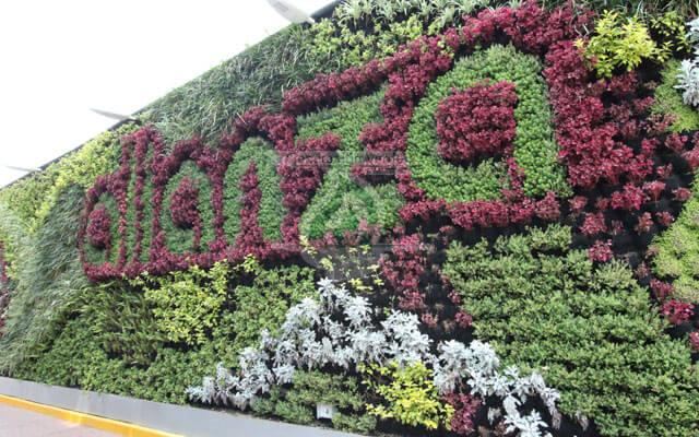 Jardín Vertical Bodegas Alianza, Metro Camarones