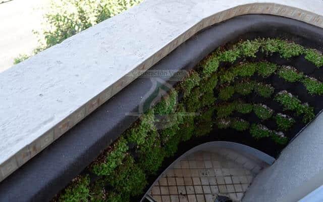 Muro Verde Instalado en el balcón