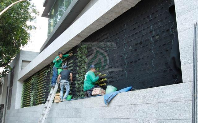Muro Verde Exterior, San José Insurgentes