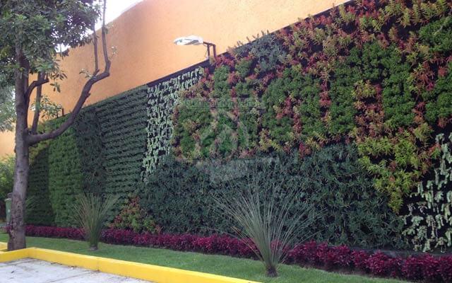 Vegetación Natural