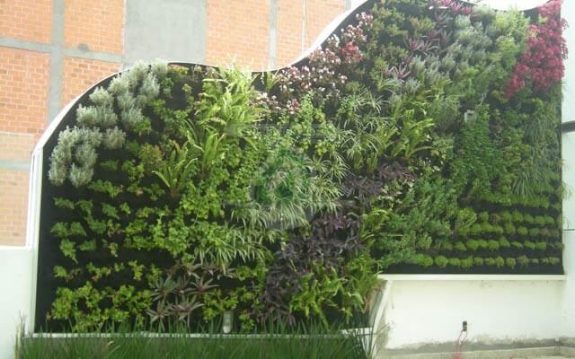 Muro Verde Exterior Pestalozzi