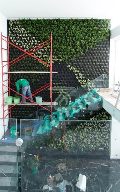 Proceso de colocación de vegetación
