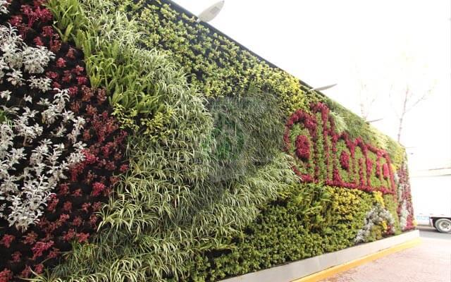 Muro Verde Bodegas Alianza