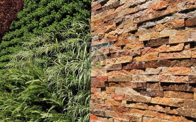 El Muro llorón hace un contraste que da un excelente aspecto a su espacio