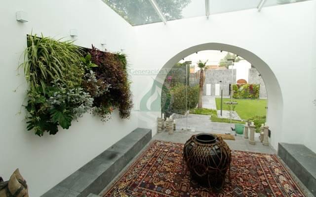 Muro vivo en Interior