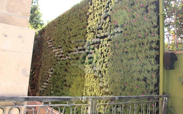 Jard n vertical himalaya for Jardines verticales historia