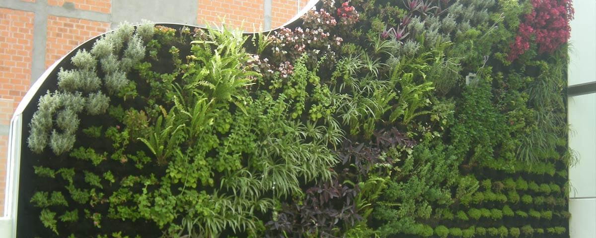 Ante la falta de espacios se crean los jardines verticales for Muros verdes naturales