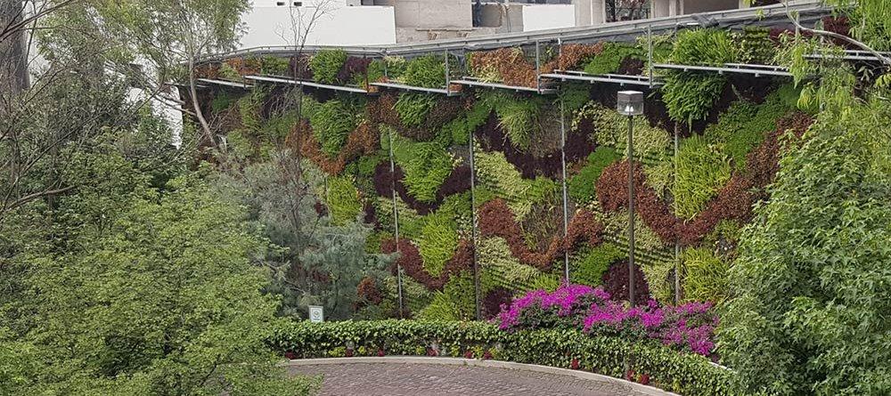 Jardín Vertical Reforma en CDMX – Solución visual para colindancias