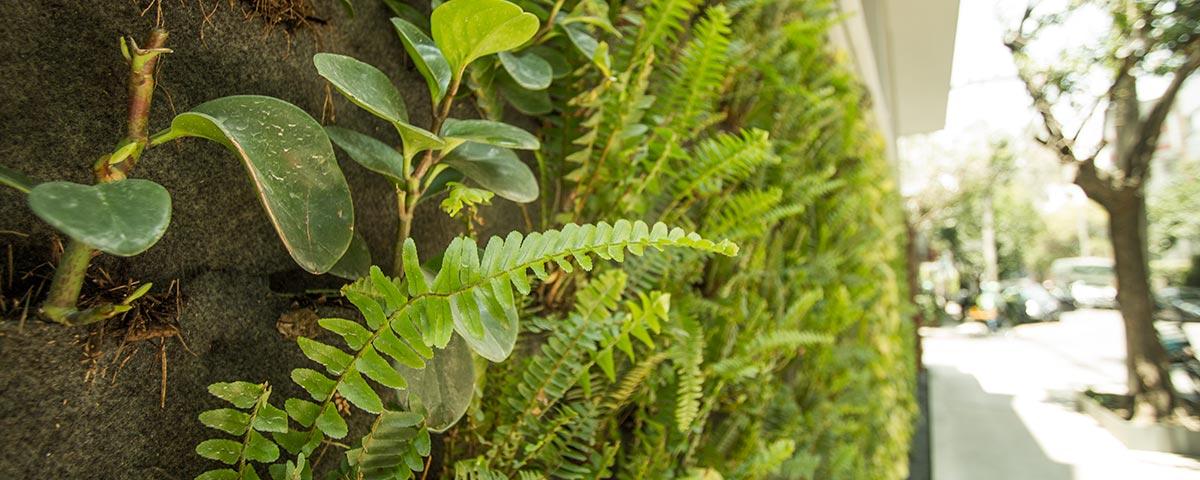 Beneficios de jardines verticales naturales - Muros verdes verticales ...