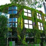 6 Revestimientos Ecológicos para Fachadas de la Arquitectura Sustentable