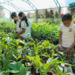 4 Estrategias para crear Conciencia Ambiental en las Escuelas