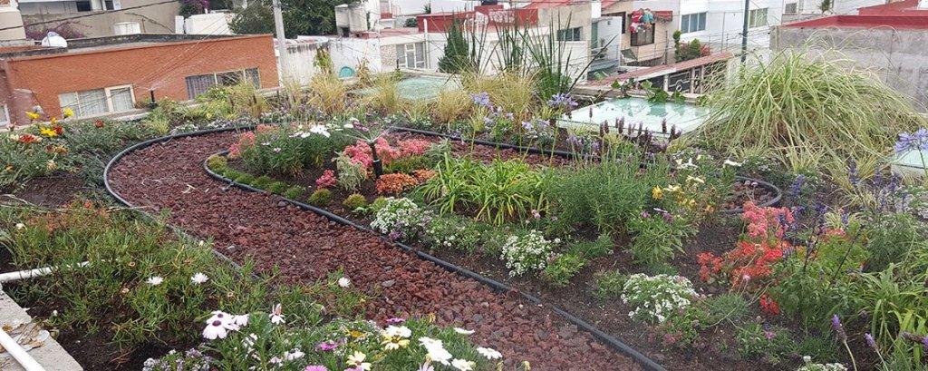 5 propuestas sustentables para obtener la certificaci n leed for Historia de los jardines verticales