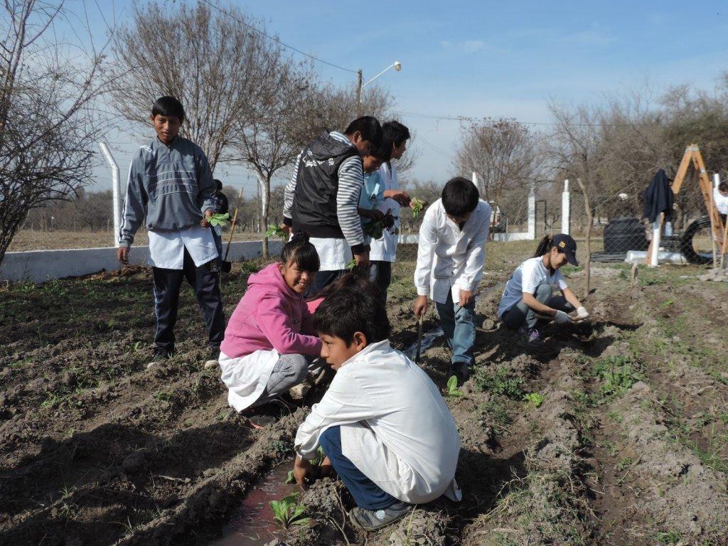 Huerta-Organica-en-Escuelas-Rurales