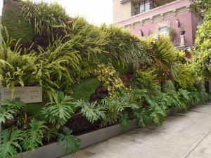 Jardín-Vertical-Exterior