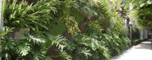 Educación Ambiental con Jardines Verticales en Instituciones Educativas