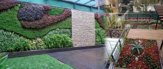 Jardín Vertical y Azotea Verde
