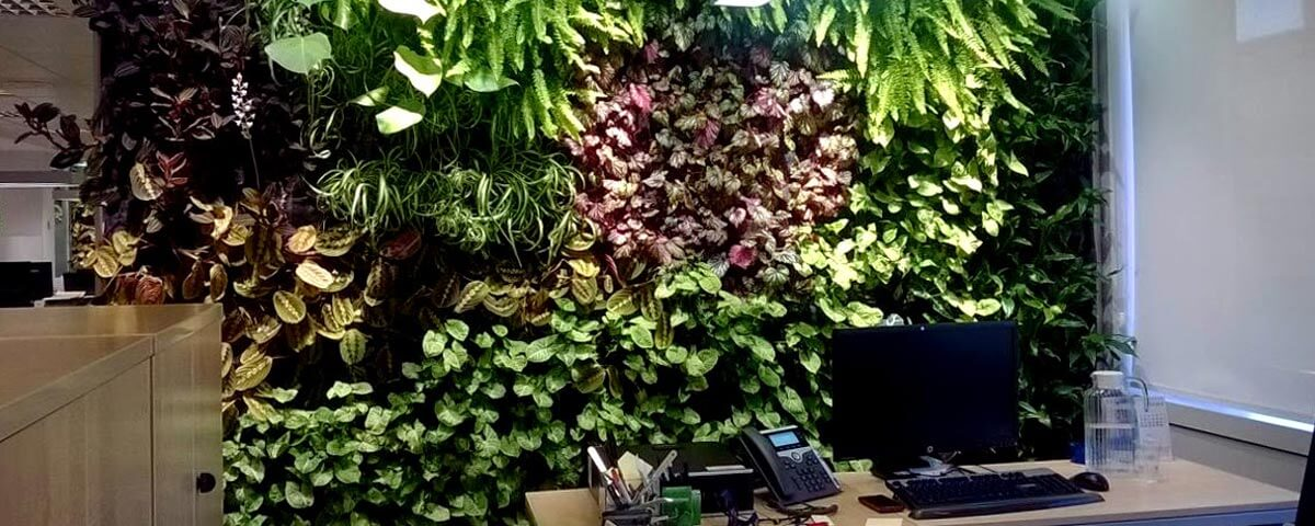 Naturación-de-Oficinas