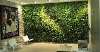 Remodelación con Muros Verdes