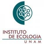 Logo-ie