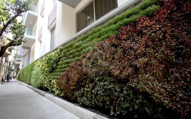 Jard n vertical n poles benito ju rez generaci n verde for Historia de los jardines verticales