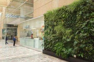 Jardín Vertical Interior, Oxxo Centro Médico Siglo XXI