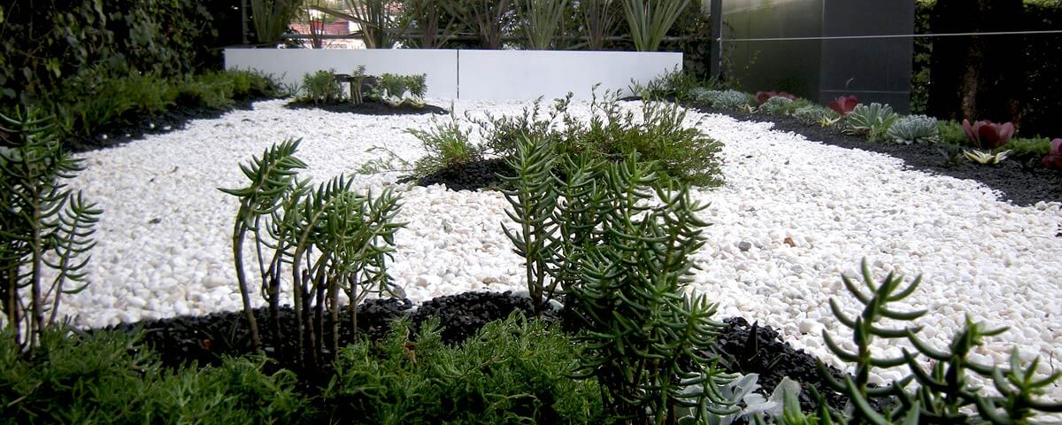 Azotea Verde Lomas de Chapultepec V sección