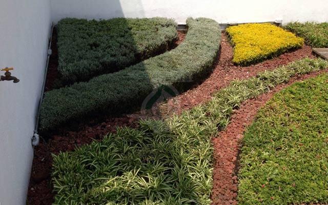 Azotea Verde Roma Norte, Cuauhtémoc