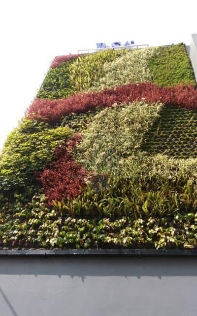 Jardines Verticales PISA Laboratorios, Coyoacán