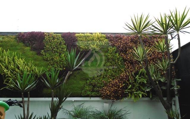 Jard n vertical hacienda de las palmas huixquilucan for Jardines verticales historia