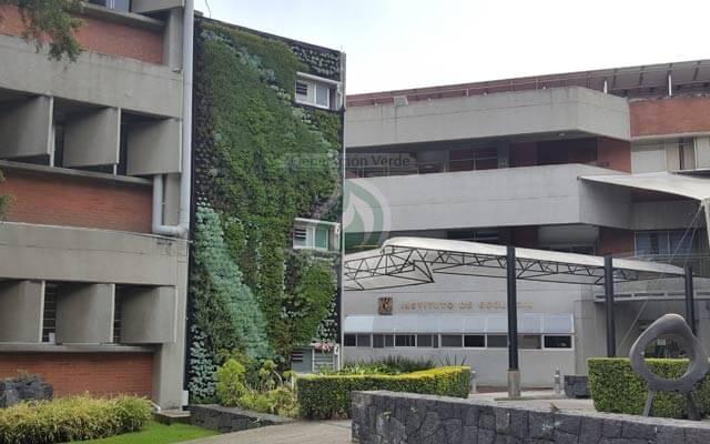 Muro Verde Exterior UNAM Ecología