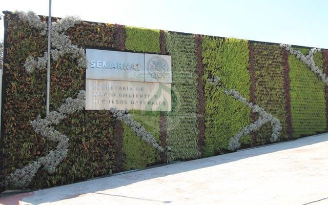 Muro Verde Exterior SEMARNAT